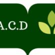 Asociatia ARAD pentru Copii Dislexici
